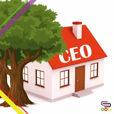 聽別人的故事(11)- 愛的CEO
