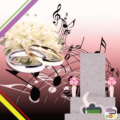 樹葉在唱歌(17)- 完美婚禮故事