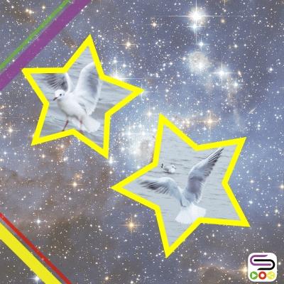數星星(06)- 為你加對翼