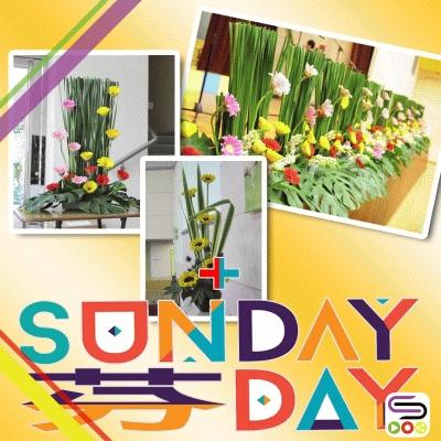 Sunday芬day(05)- 聖壇花の戀