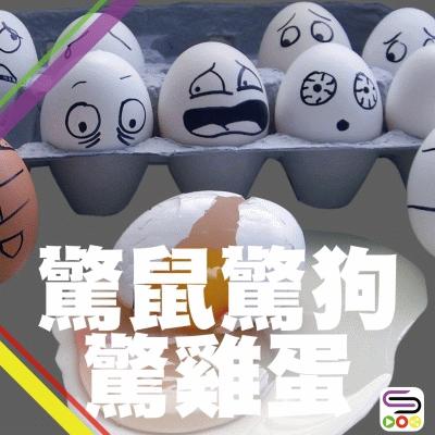 驚少少扮代表(01)- 驚鼠驚狗驚雞蛋