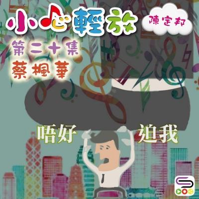 小心輕放(陳定邦)(19)- 蔡楓華