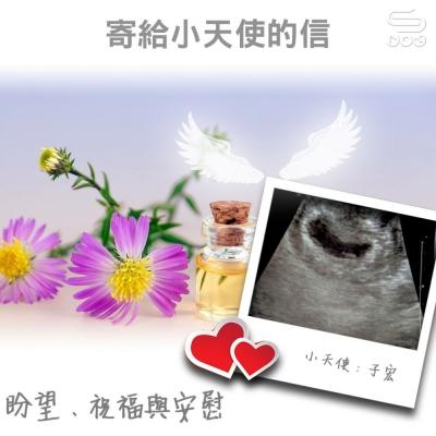 寄給小天使的信(13)- 盼望、祝福與安慰