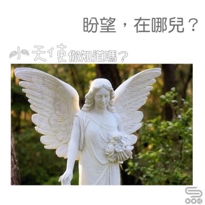 小天使,你知道嗎?(04)- 盼望,在哪兒?