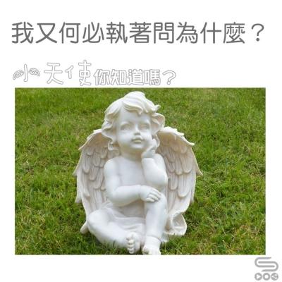小天使,你知道嗎?(10)-