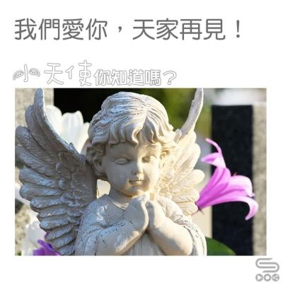 小天使,你知道嗎?(13)- 天家再見!
