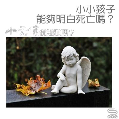 小天使,你知道嗎?(01)- 小小孩子能夠明白死亡嗎?