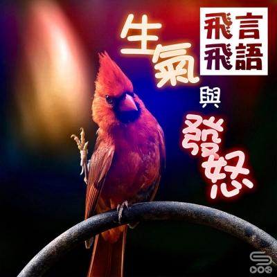 飛言飛語(06)- 生氣與發怒