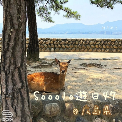 Sooolo遊日47(06)- 蠔飲蠔食廣島縣