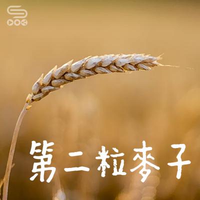 第二粒麥子