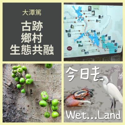 今日去wet...land(03)- 大潭篤 - 古跡,鄉村,生態共融