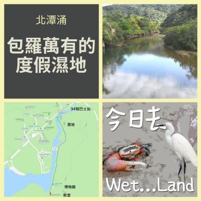 今日去wet...land(04)- 北潭涌 - 包羅萬有的度假濕地