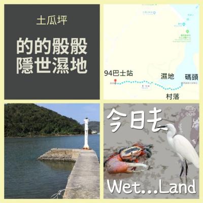 今日去wet...land(05)- 土瓜坪 - 的的骰骰隱世濕地