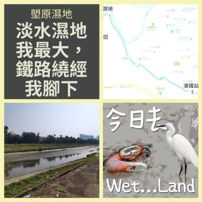 今日去wet...land(07)- 塱原濕地 - 淡水濕地我最大,鐵路繞經我腳下