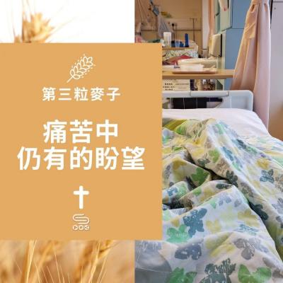 第三粒麥子(01)- 痛苦中仍有的盼望