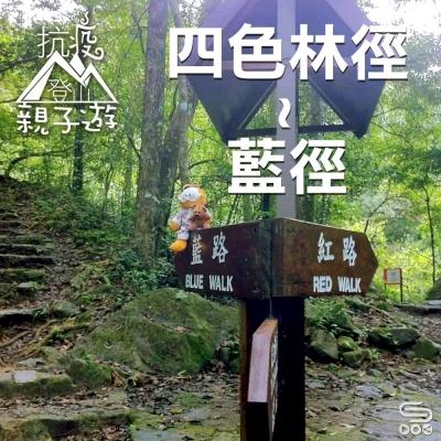特備節目:抗疫登山親子遊(04)- 大埔四色林徑(藍徑)