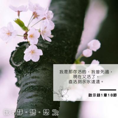 每日靜.聽.想(364) -永活的主
