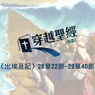 穿越聖經(142) - 〈出埃及記〉28章22節-29章40節